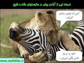 جواب دولت به انتقاد با ادبیات ویژه